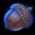 Acorn of Swiftness.png