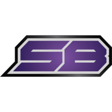 Strictly Businesslogo square.png
