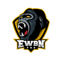 ESportsWiesbaden.Prologo square.png