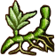 Substances Echinops rootstock.png