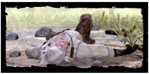 Geralt, sans connaissance