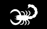 bannière de la VIIe brigade de cavalerie de Daerland