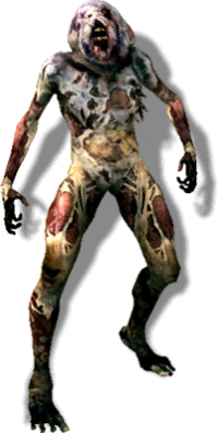 Tw2 journal rotfiend.png