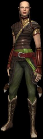 La demi-elfe dans le jeu The Witcher