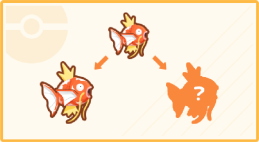 Info Magikarp Patterns.png