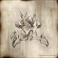 Butterfly h.jpg