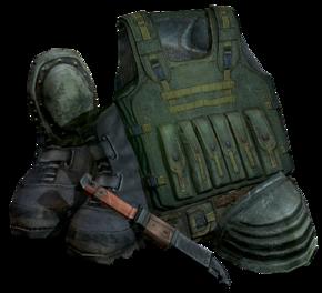 Csky-1 armor.png