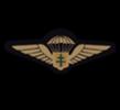 Demi-Brigade SAS