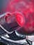 Console - Universal - Crimson Force Field icon.png