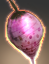 Livanian Beet icon.png