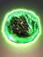 Polygeminus grex communitas icon.png