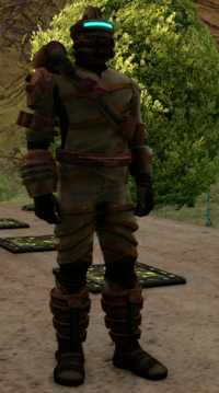 Ak'ched Soldier.png