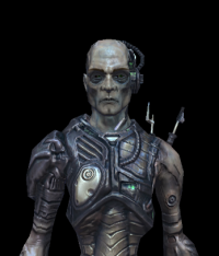 Borg Ensign 02.png
