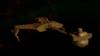 Klingon Battle Cruiser (K't'inga).png