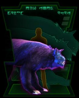 Vivver Cat.png
