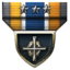 Tactician Accolade icon.png