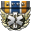 Chief Medical Officer icon.png