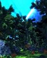 Orith II jungle.jpg