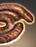 Haggis icon.png