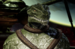 Gorn Male (KDF).PNG