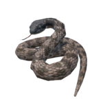 Night Snake.png