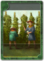 Hops tending advanced.png