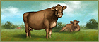 Dairy farming.png