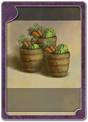 CARDTYPE VEGETABLES HAUL.png