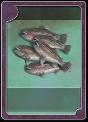 CARDTYPE FISH HAUL BIG.png