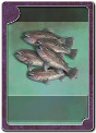 CARDTYPE FISH HAUL BIG.png