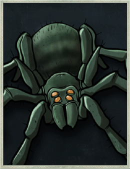 SS spidermilliegaz.png