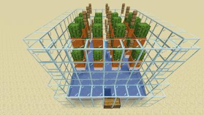 Kaktusfarm (Mechanik) Bild 2.3.png