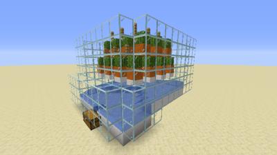 Kaktusfarm (Mechanik) Bild 2.2.png