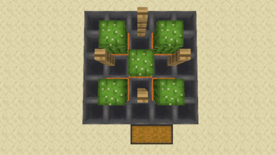 Kaktusfarm (Mechanik) Bild 1.4.png
