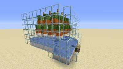 Kaktusfarm (Mechanik) Bild 2.1.png