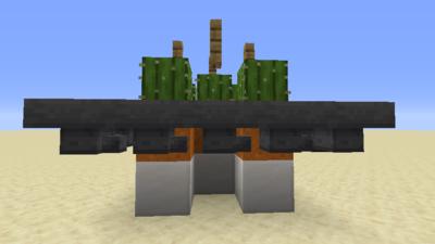Kaktusfarm (Mechanik) Bild 1.3.png