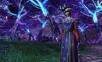 Elementalist Shadowlands 01.jpg