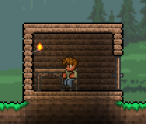 House - The Official Terraria Wiki on