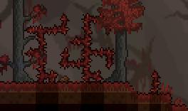 猩紅之地中的多刺灌木