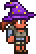 Wizard's Hat equipped (female)