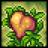 Thực vật