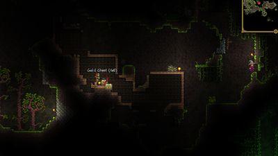 Infinite Gold Chest Bug 2.jpg