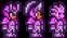 Orichalcum armor