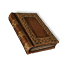 Lore Book1 detail4 color5.png