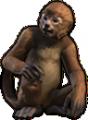 Concept art Monkey.png