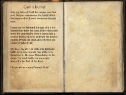 Garil's Journal.png