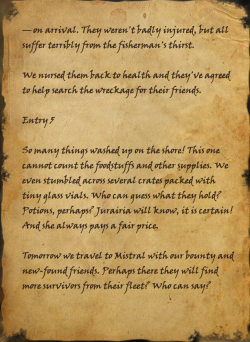 Salvager's Torn Journal.png