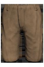 Clothing cargoshorts brown.png