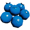 IconBlueberry.png