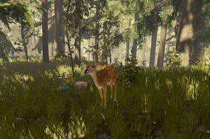 Deer-the-forest-1-0-dirty (1).jpg